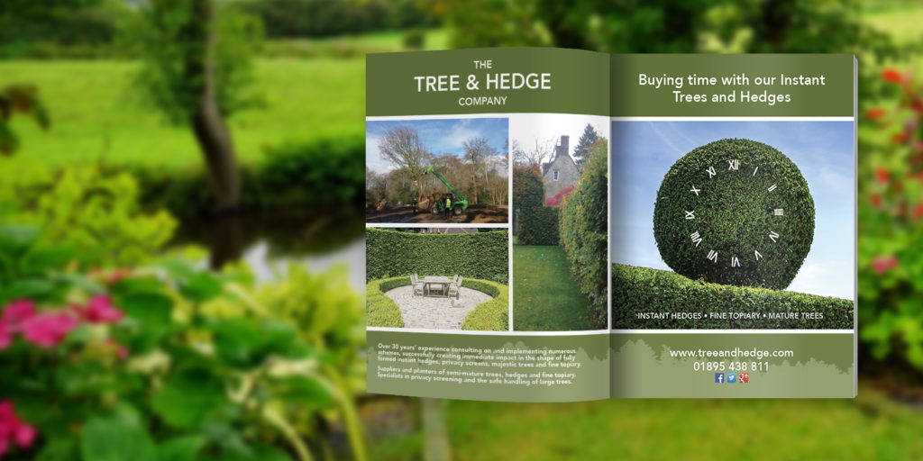Magazine Advert for Tree & Hedge Company
