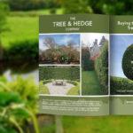 Magazine Advert for Tree & Hedge Company